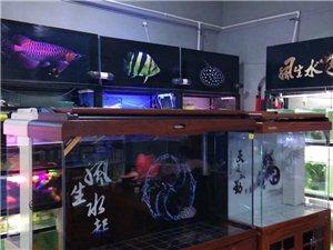 魚店轉租貨品清倉