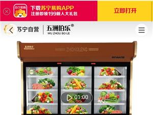冰柜島柜展示柜水果柜飲料柜批發