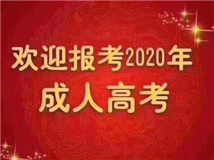 2020年成人高考开始招生啦