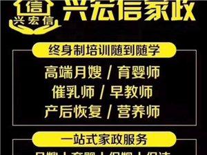 青州專業連鎖家政公司提供專業月嫂育嬰師保姆保潔護理