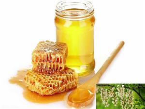 出售純正洋槐蜜,棗花蜜,蜂巢蜜,花粉