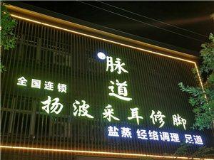 杨波采耳(西亚斯店)