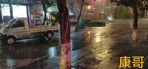 雨中的陵州城