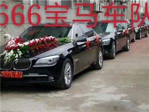 罗山666宝马婚庆车队