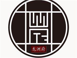四川龙洲府信息服务有限公司