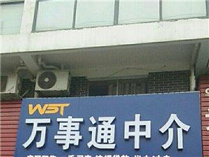 萬事通紫陽東路店
