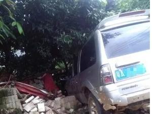 高州大井六祥管理区大楼旁一小车冲出马路撞树!