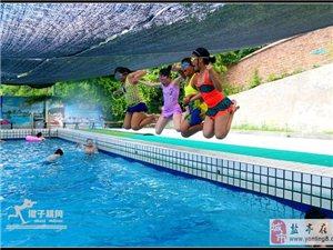 【傻子视角】泳池欢歌