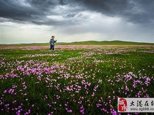 【边走边玩】3天2夜锡林郭勒大穿越:玩遍草原、沙漠、森林、湖泊,体验草
