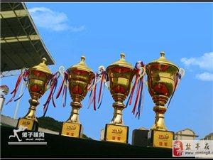 【傻子视角】盐亭县第二届青年足球赛颁奖仪式