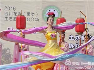 2016  合江荔枝节盛大开幕
