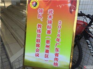 河婆杨式太极馆参加广东省传统武术项目锦标赛获奖