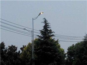 城区有条线路的路灯白天都是亮的