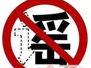 〔网警辟谣〕8月1日驾照新规开始实施?你是不是又被忽悠了!