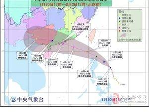 """茂名群众要注意啦:4号台风""""妮妲""""""""妮妲""""可能正面袭击我市并带来严重风"""