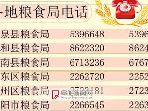 阜阳小麦临时收储库点