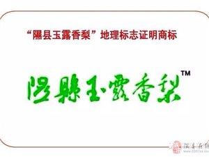 """""""隰�h玉露香梨""""地理�酥咀C明商��"""