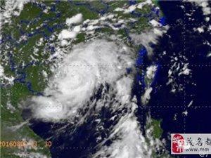 """高州小伙伴:受台风""""妮妲""""影响,暴雨应急响应Ⅲ级升级为Ⅱ级!请做好防御"""