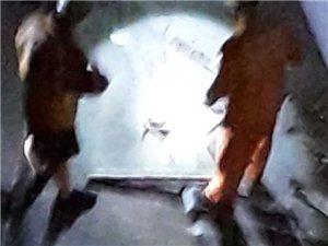 高州东门巷民宅惊现一条两斤重的毒蛇(图)
