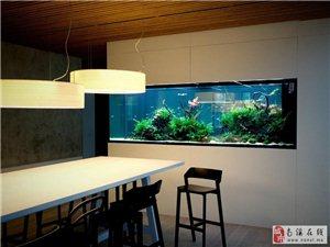 客厅风水布置 鱼缸的正确摆放方法