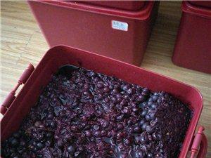 葡萄酒的功效与作用――――大邑特百惠