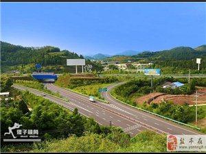 【傻子视角】成德南高速盐亭收费站景色