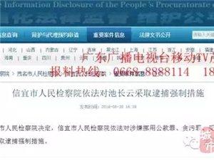 信宜市贵子中学校长曹平  涉嫌受贿被检察院立案侦查