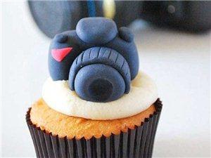 【有趣的动物蛋糕】