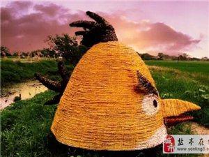 """中秋小假期一大批""""稻草人""""造型!空降(恒都商业广场),门票还免费!"""