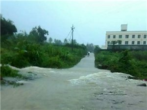 2016年8月17日-19日�B�m暴雨,看看青松�l小部分的河流。