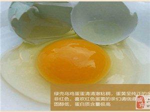 六合采电子商务公司之――绿壳乌鸡蛋