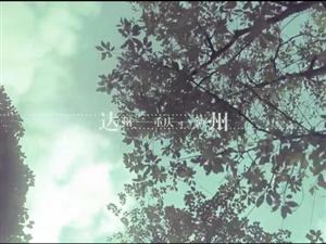 【CC-FILM影像】《庭的18纬度》