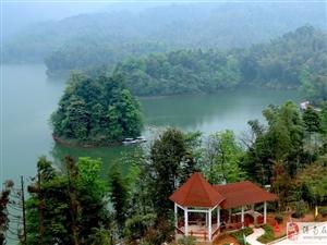天岛湖风景   美