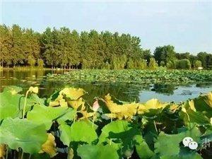 千赢国际|最新官网市肃州区将建成四大文化旅游名镇