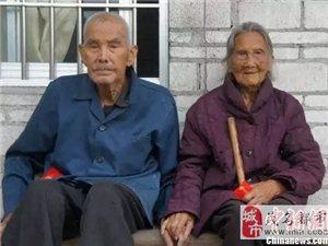 信宜百岁夫妻:你111岁我105岁,而我们还在一起