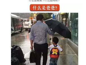 什么是爸爸?什么是妈妈?两张图感动上亿人