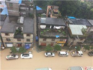 """台风过境,黄土水再进城,环城路——""""黄城路""""。。。"""