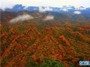自驾游遇上红叶节巴中10月将演两场旅游大戏