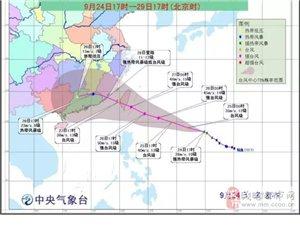 """台风""""鲇鱼""""或影响国庆出游,茂名提前预警组织船舶防御!"""