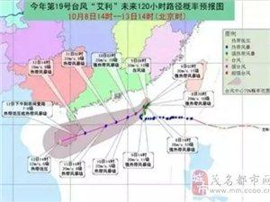 """19号台风""""艾利""""来袭!对茂名有什么影响吗?..."""