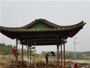 第十二届中国(荆门)菊花展开始进场布展施工