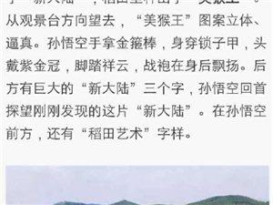 【广西最美稻田集,真是美呆了!】扶绥昌平上榜啦!!
