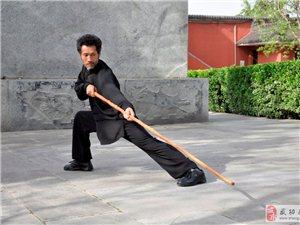 史智龙武影(2015) 微信:智慧武龙(zhihuiwulong)