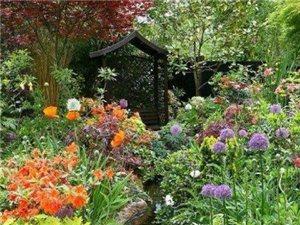 打造一个自己的花园
