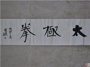 习武太极――-史智龙(2016年冬月)