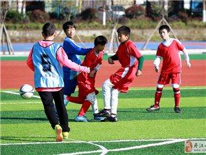 丹江口老河口中小学生足球联谊赛