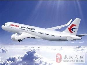 东航飞往武汉一航班遭重度颠簸;多名乘客受伤