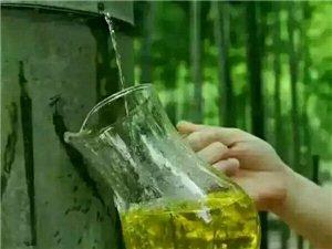 竹筒酒原生态绿色健康酒会呼吸的酒 福建宁化客家特产竹筒酒