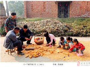 """【摄影展播】武功县""""靓农业、美农村、新农民""""摄影大赛二等奖作品"""
