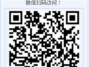 拐枣酒-陕南旬阳土烧 特产两瓶实惠装-中国好人杨厚根家乡的酒